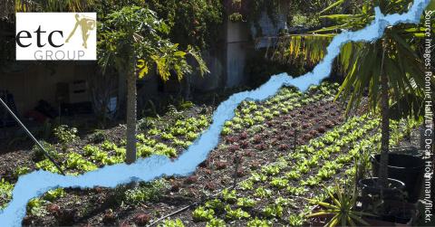 Small urban farm with blue earthquake fissure superimposed.